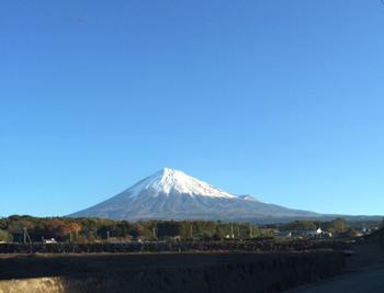 fuji11.20.jpg