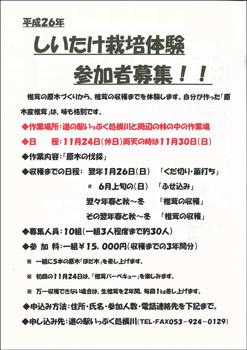 shiitake24_1.jpg